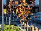 ЖК Каскад на Ленина - ход строительства, фото 140, Октябрь 2020