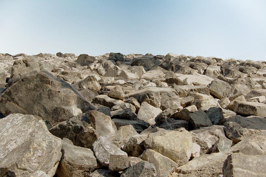 Нефть, платина, морёный дуб: чем на самом деле богата воронежская земля? - фото 2